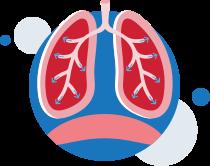 ventilation-respiration-normale poumons-illustration
